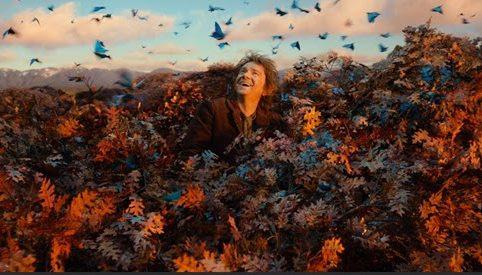 Der Hobbit Smaugs Einöde Martin Freeman