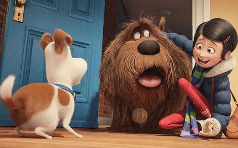 Pets Kinderfilm