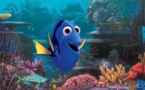 Dorie, ein blauer Fisch aus Findet Dorie